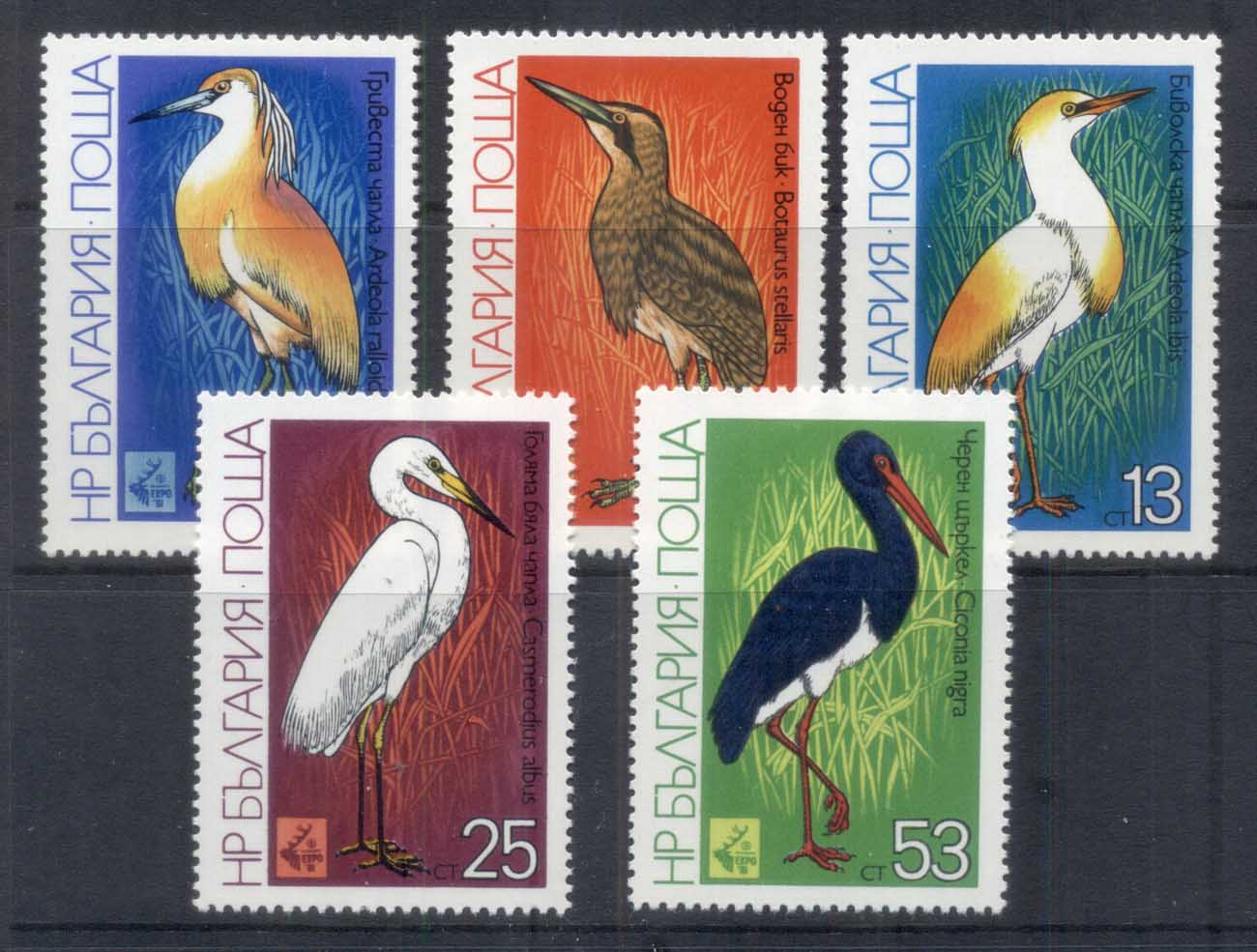 Bulgaria 1981 Birds MUH