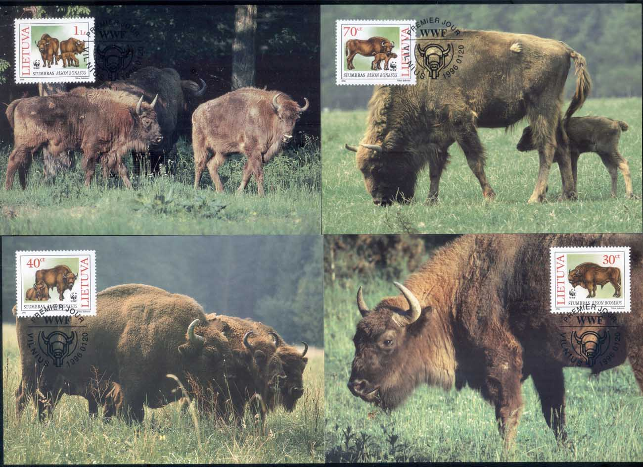Lithuania 1996 WWF European Bison Maxicards