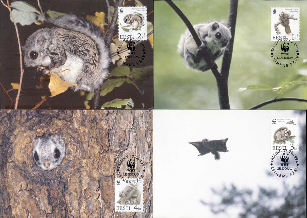 Estonia 1994 WWF European Flying Squirrel Maxicards