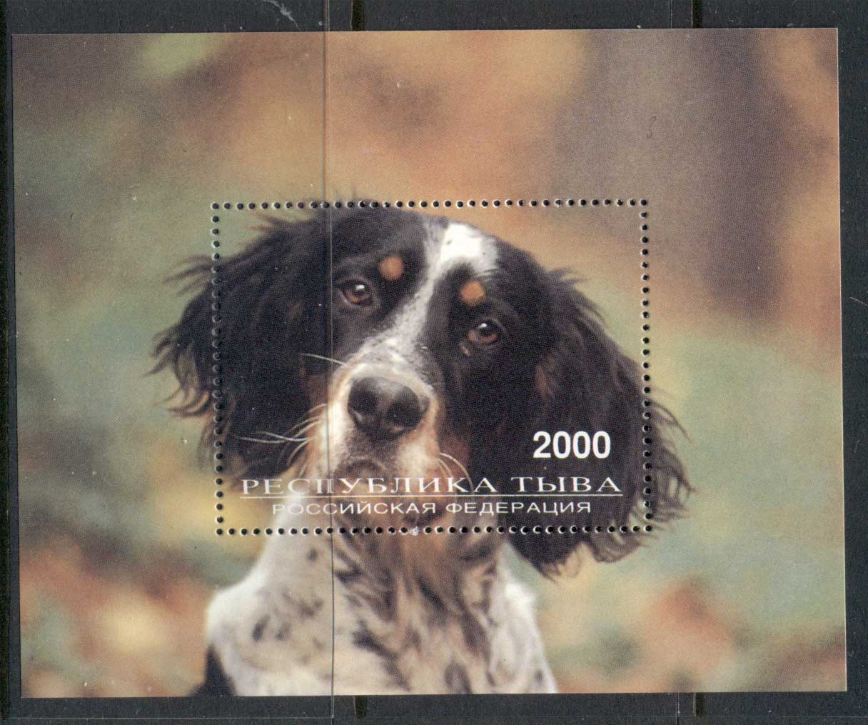 Russian State 2000 c. Dog MS MUH