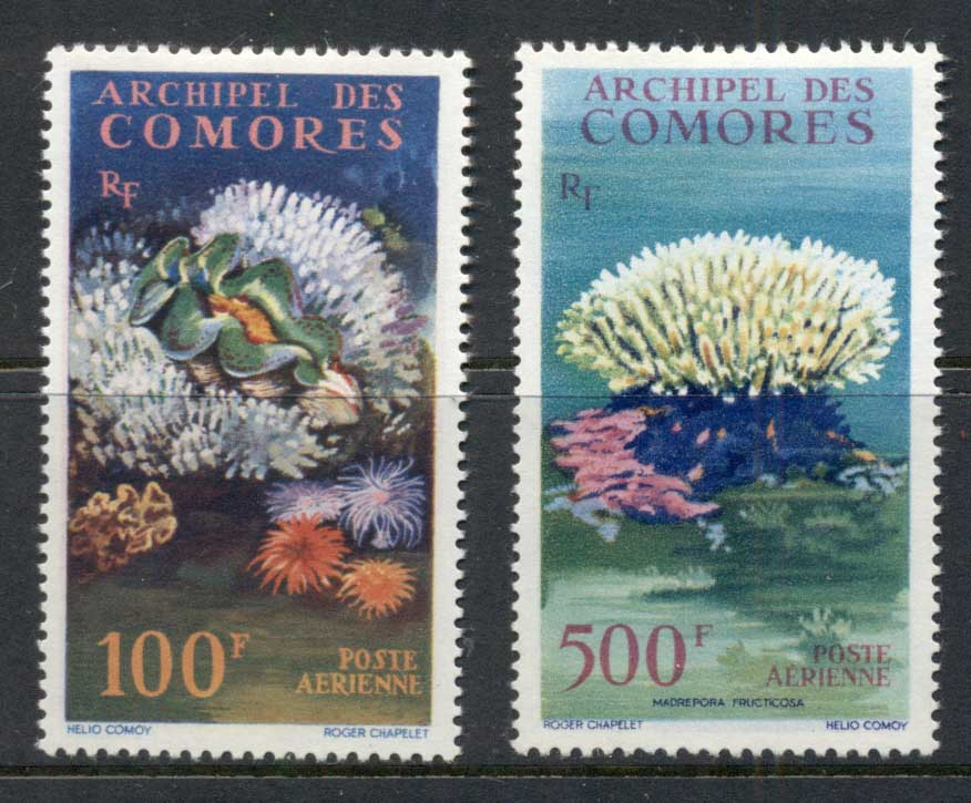 Comoro Is 1962 Marine Life, Corals MLH
