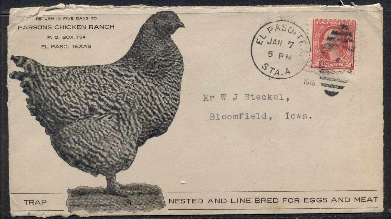 USA 1916 2c Washington Advertising Cover, Chicken, Bird
