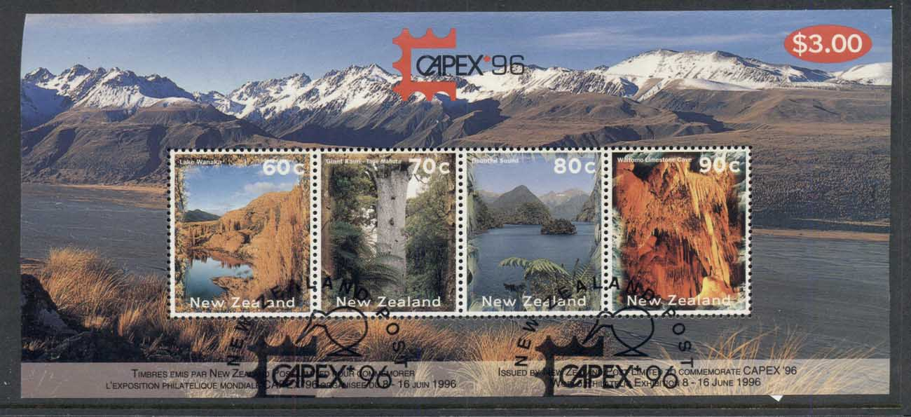 New Zealand 1996 Capex, Views MS CTO