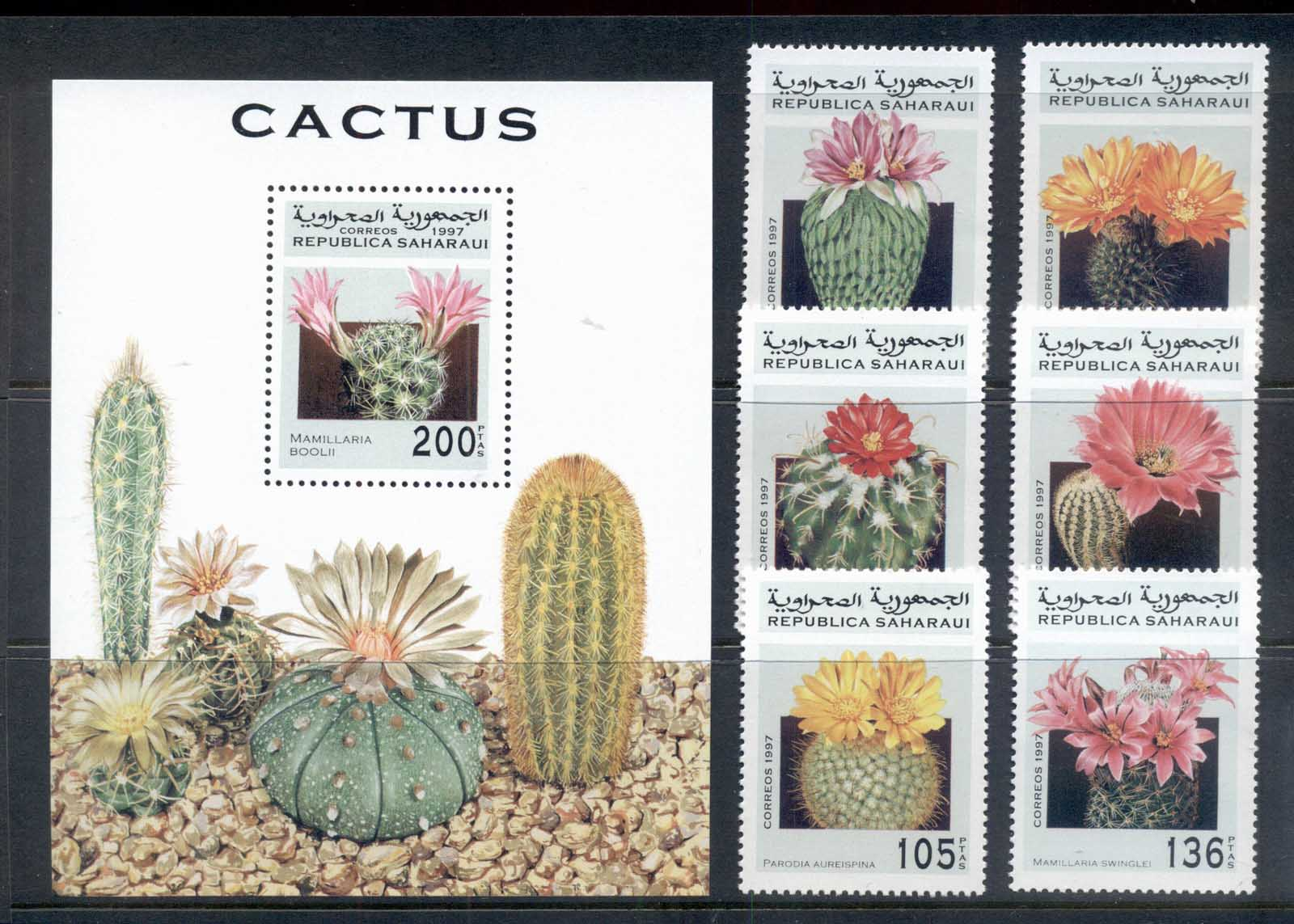 Sahara Occidental 1997 Cacti Flowers + MS MUH