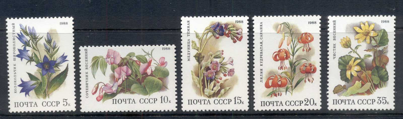 Russia 1988 Flowers Populating Deciduous Forests MUH