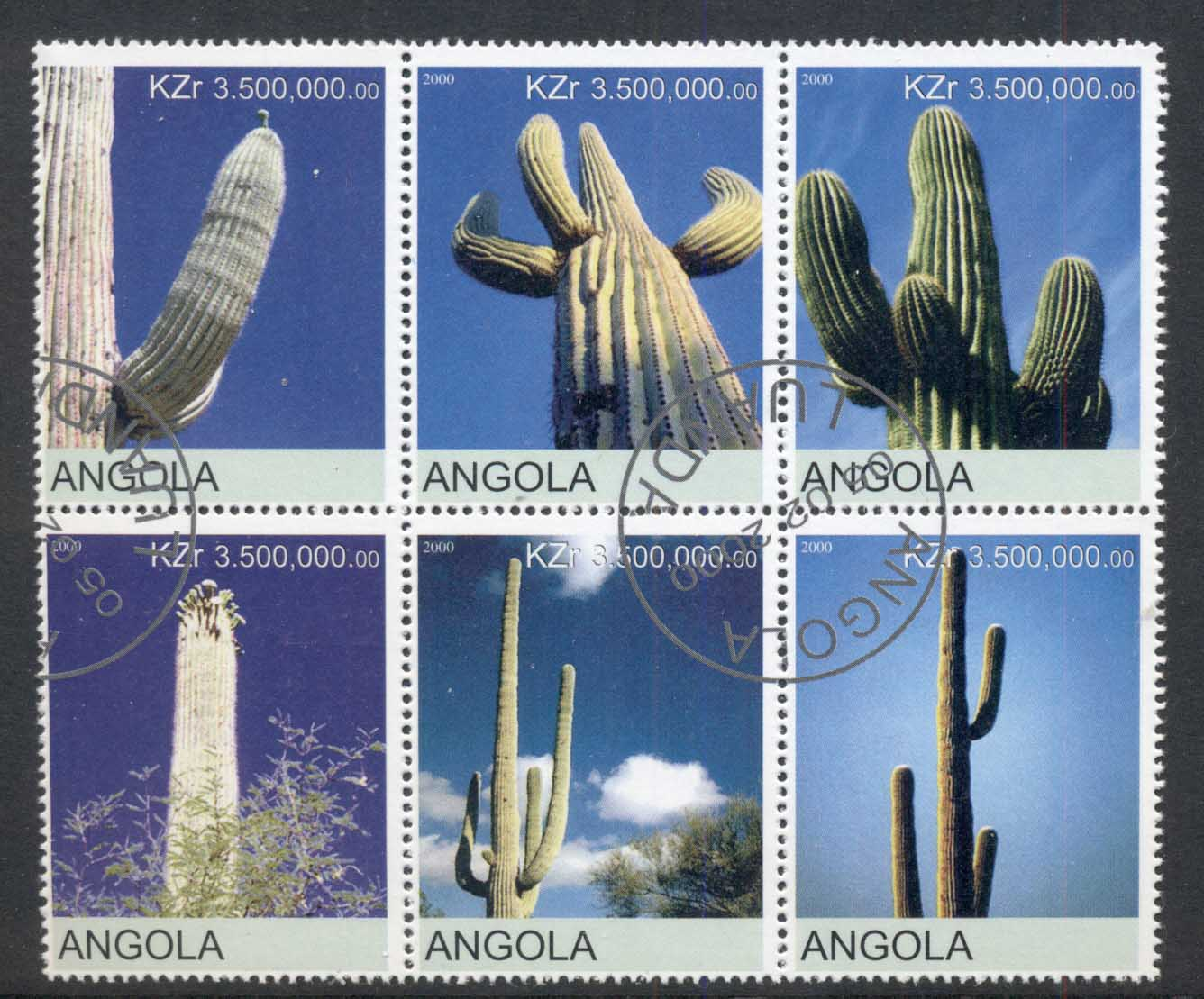 Angola 2000 Cacti blk6 (rebel Issue) CTO
