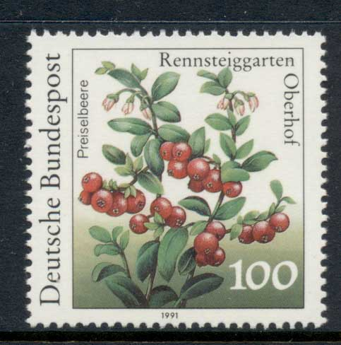 Germany 1991 Flowers 100pf MUH
