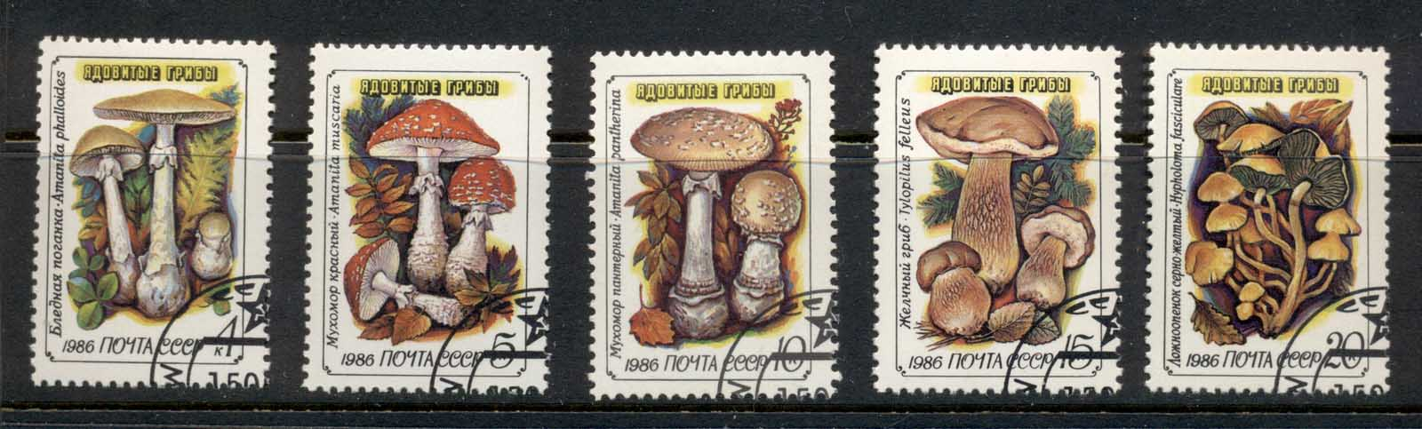 Russia 1986 Funghi, Mushrooms, Toadstools CTO