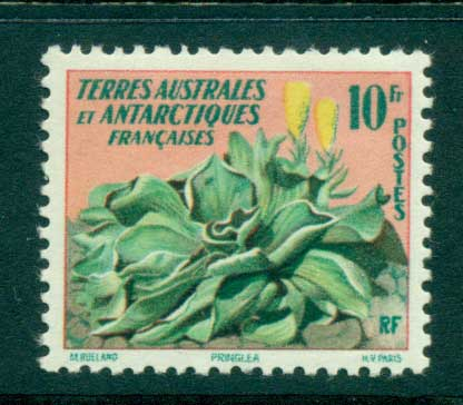 French Antarctic Territory 1959 Flower MLH lot38663