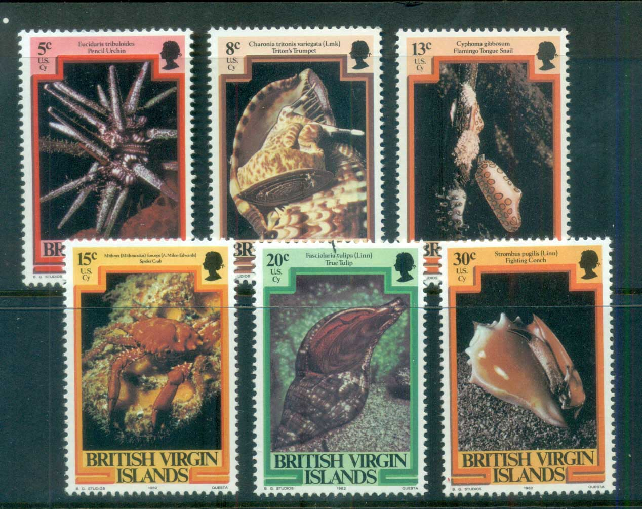 Virgin Is 1982 Marine Life dated 1982 MUH lot81118
