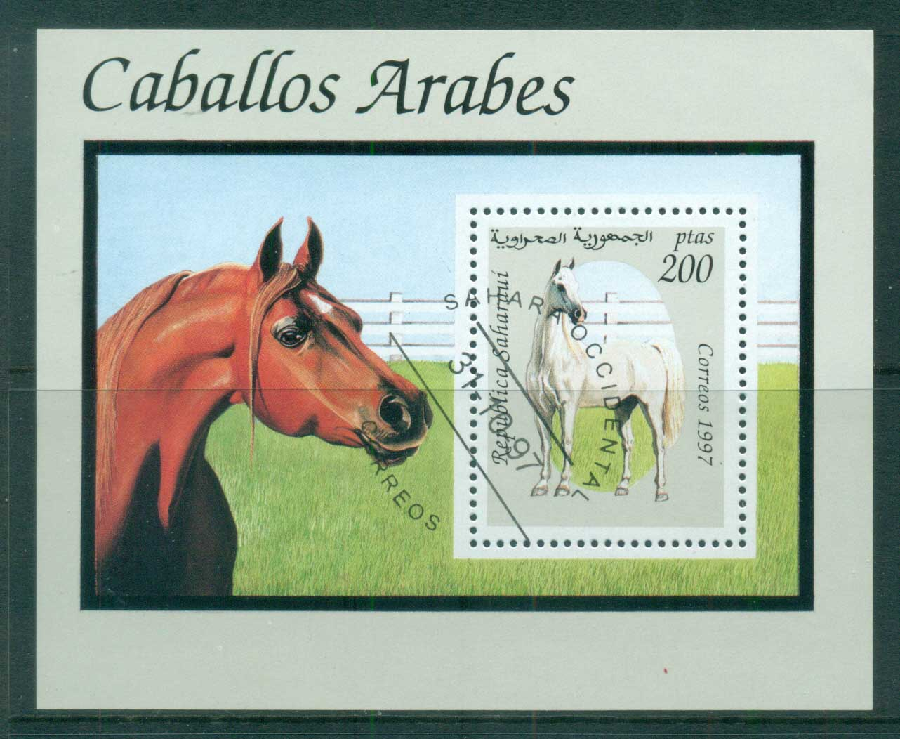Sahara Occidental 1997 Horses MS CTO