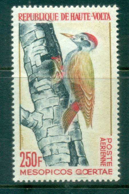 Upper Volta 1965 Birds, Woodpecker MLH