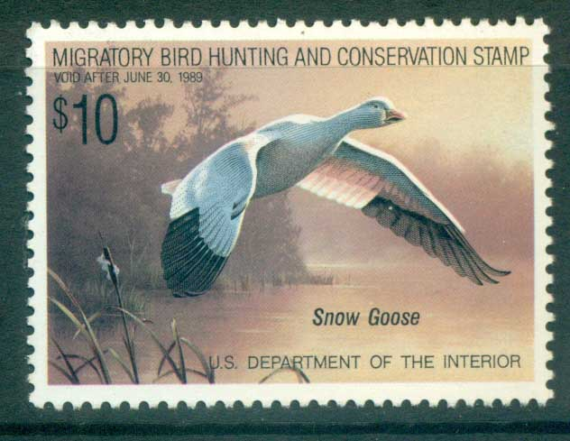 USA 1988 Sc#RW55 Federal Duck Stamp, Birds, Snow Goose MUH