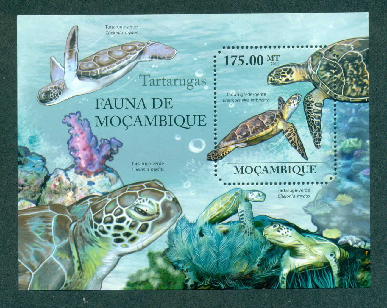 Mozambique 2011 Reptiles, Turtles, Coral MS MUH MOZ11401b