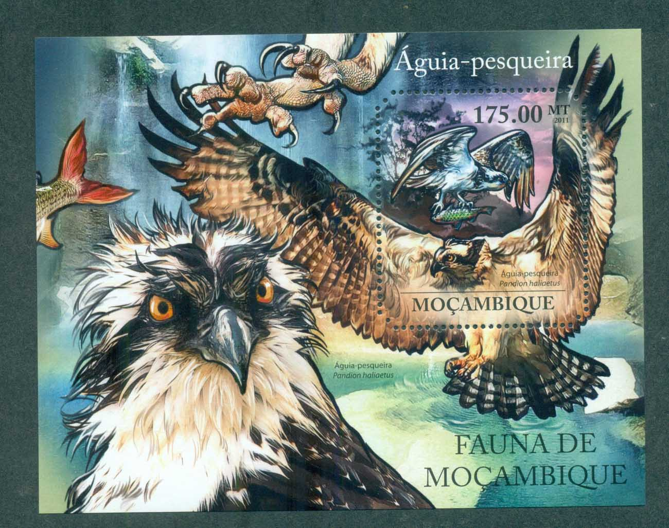 Mozambique 2011 Birds of Prey, Eagle, Fish MS MUH MOZ11430b