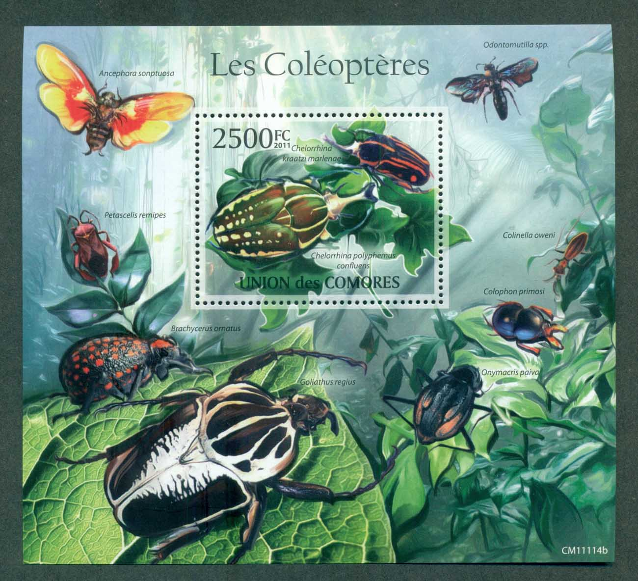 Comoro Is 2011 Insects, Beetles MS MUH CM11114b