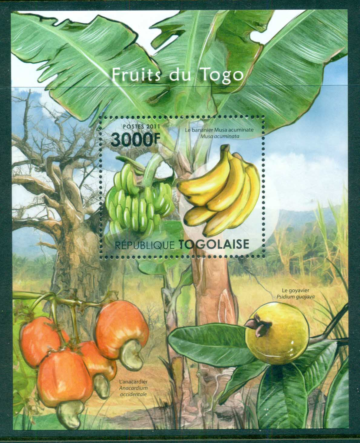 Togo 2011 Flora, Flower, Tree, Fruit MS MUH TG034