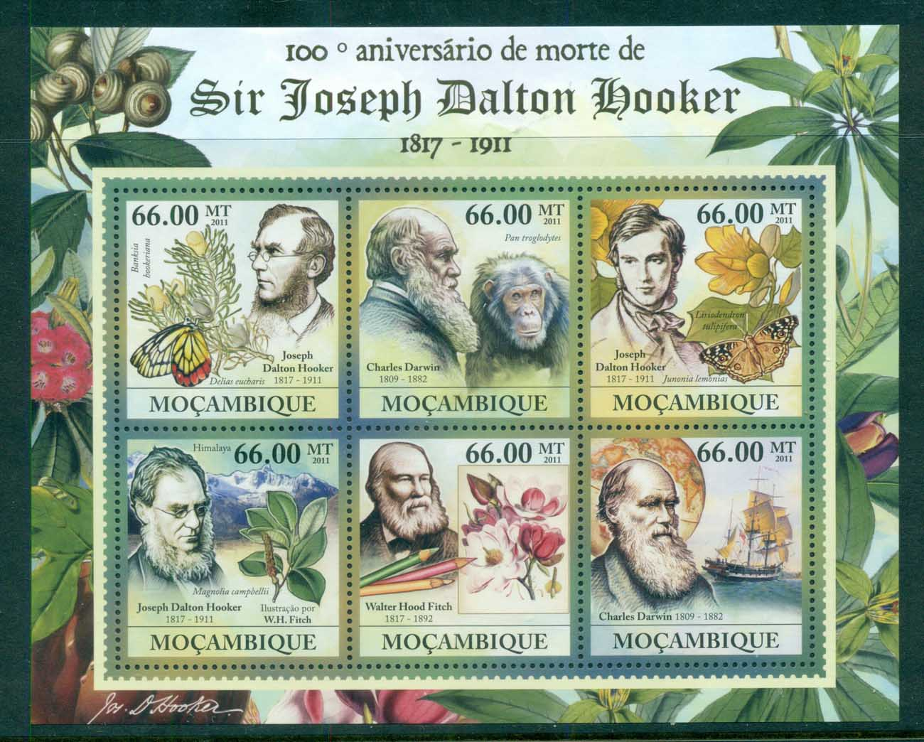 Mozambique 2011 Flora, Flower, Tree, Fruit, Flower, Sir Joseph Dalton Hooker, Darwin MS MUH MOZ023