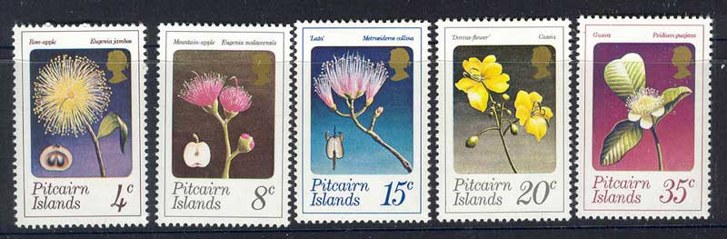 Pitcairn Is 1973 Flowers MUH Lot10266