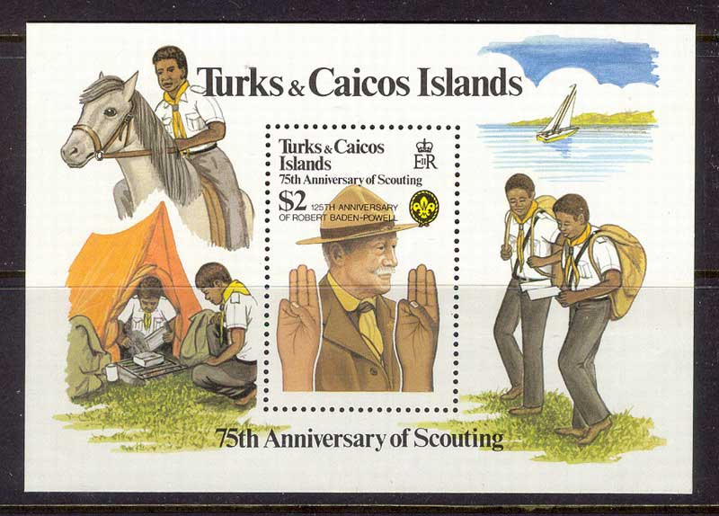 Turks & Caicos Is 1982 Scouts MS MUH Lot12000