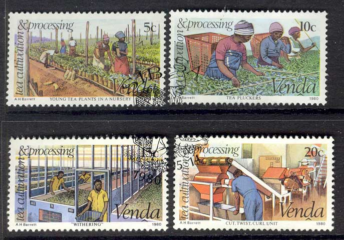 Venda 1980 Tea Cultivation FU Lot14860
