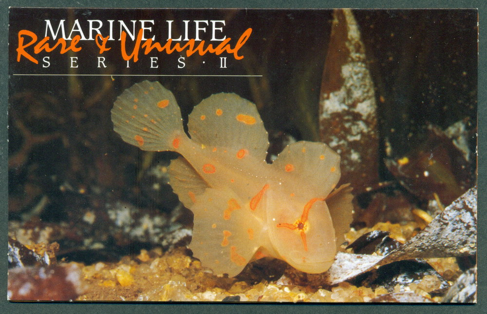 Australia 1985 Marine Life II POP Lot27868