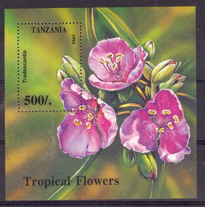 Tanzania 1995 500/- Orchids Flowers MS MUH Lot5776