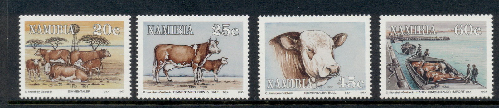 Namibia 1995 Arrival of Simmentaler Cattle MUH